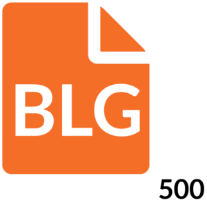 1 Blog 500 Word Post Month