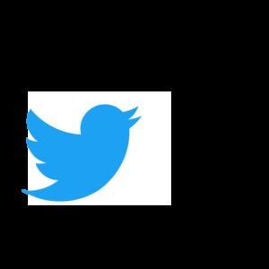 30 Twitter Posts Month 12 Months