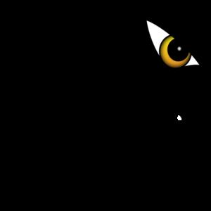 Lynx Website M1 Website Maintain Package - Lynx SEM